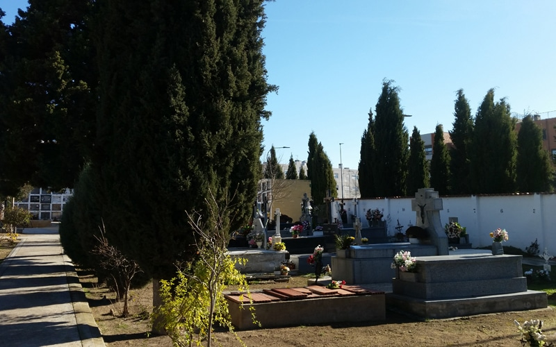 En el cementerio de Rivas hay tumbas de la época de la Guerra Civil