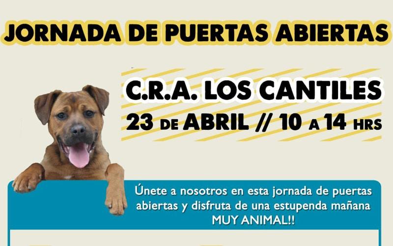 El Centro de Recogida de Animales Los Cantiles celebra una jornada de puertas abiertas