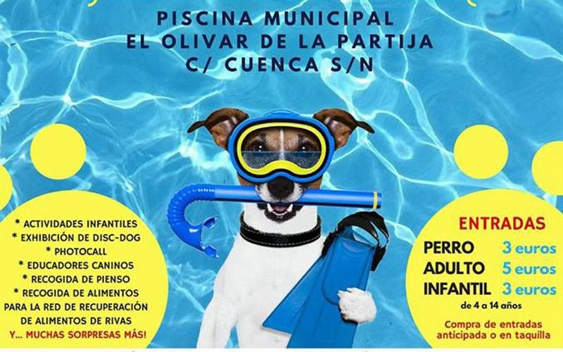 Dueños y mascotas podrán bañarse juntos en el I 'Chapuzón Perruno' de Rivas