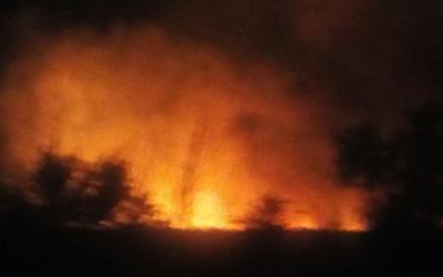 Incendio en el entorno de la Cañada Real: arden 12 hectáreas de terreno