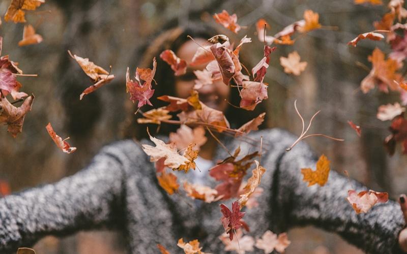 Y tú, ¿qué vas a hacer este otoño en Rivas?