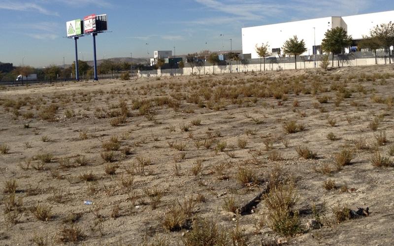 La Plataforma de Mayores de Rivas pide un acuerdo unánime para que la parcela para la futura residencia pública solo pueda destinarse a ese fin