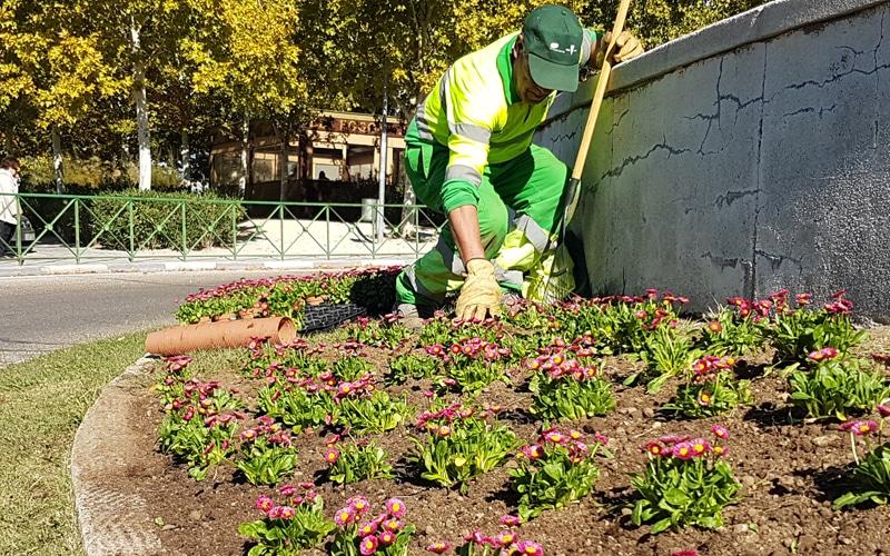 Un operario de Rivamadrid trabaja en labores de replantación (Fuente: Rivamadrid)