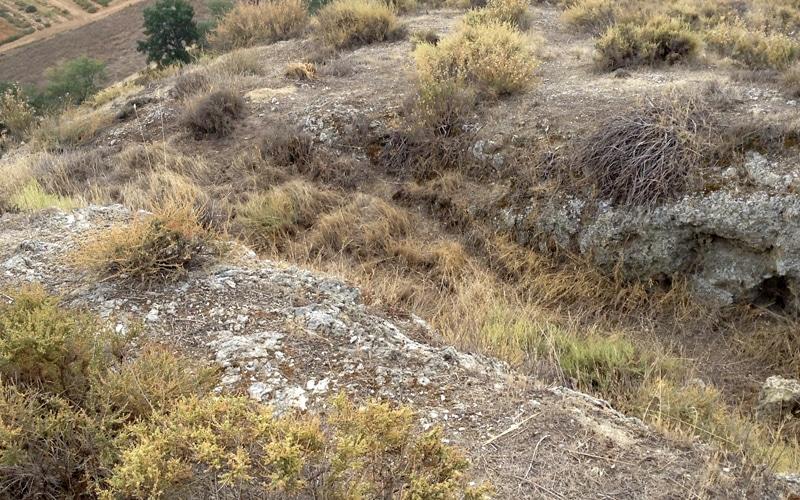 Restos de foso en las ruinas del castillo de Ribas de Jarama
