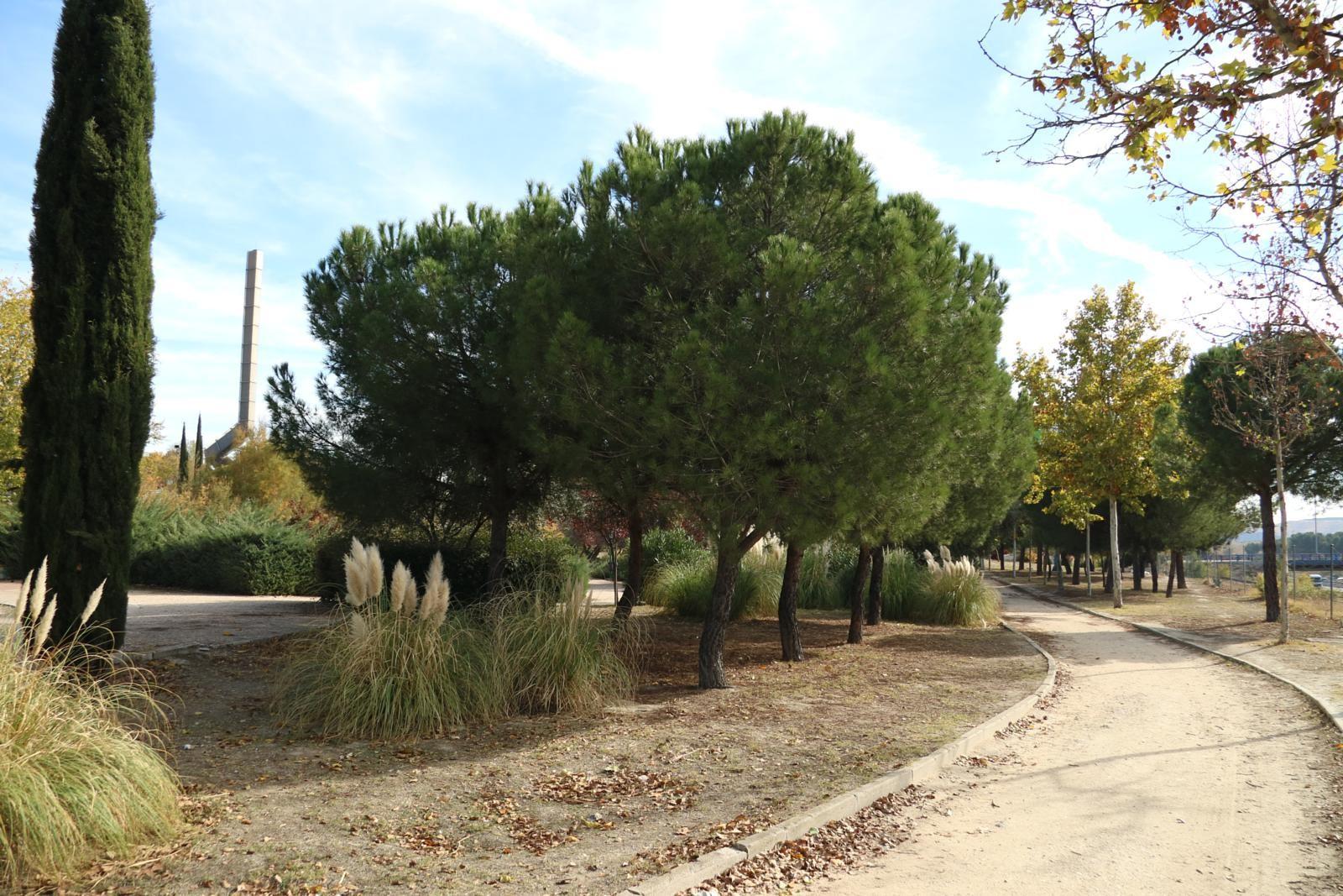 Recorrido de la propuesta de ciclovía entre el Retiro y la Vía Verde del Tajuña. Parque de Montarco (Fuente: Asociación Ciclovía).