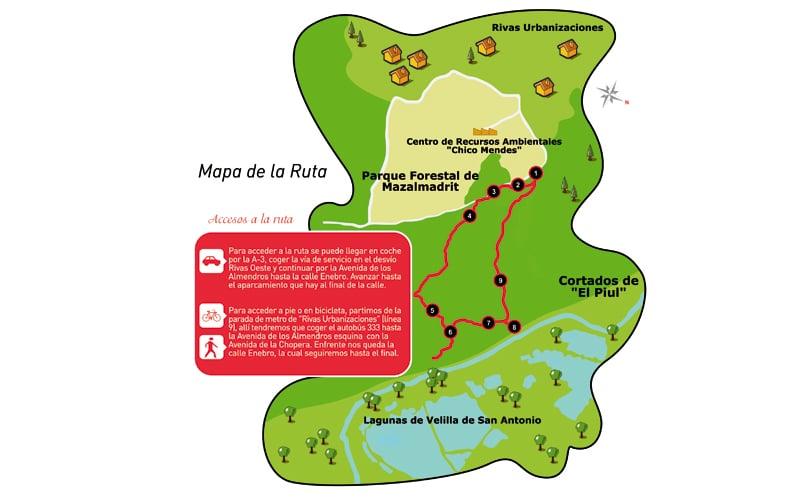 Senda de la ruta de El Espartal (Fuente: Ayuntamiento de Rivas Vaciamadrid).