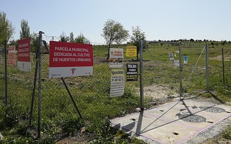 Parcela municipal destinada a huertos urbanos en Rivas