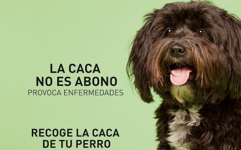 La caca no es abono: multas de hasta 300 euros en Rivas por no recoger los excrementos de las mascotas