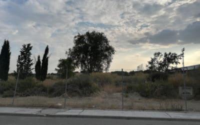 Zona de juegos al aire libre, área veterinaria, una 'minigranja' y grandes espacios para perros y gatos: los detalles del futuro Centro de Protección Animal de Rivas