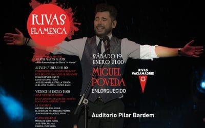 Planes para el 'finde' del 18 al 21 de enero en Rivas, Arganda y alrededores