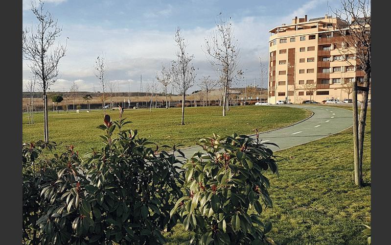 Rivamadrid acomete diversos trabajos de jardinería por toda la ciudad