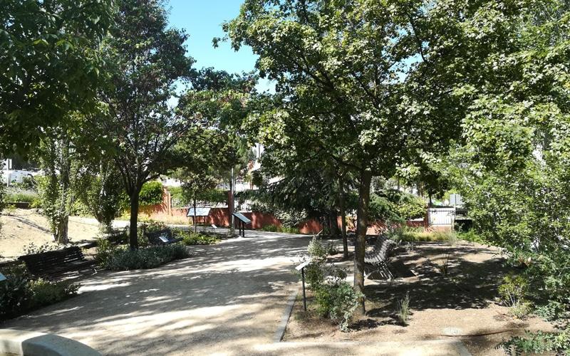 arboreto rivas vaciamadrid botanico