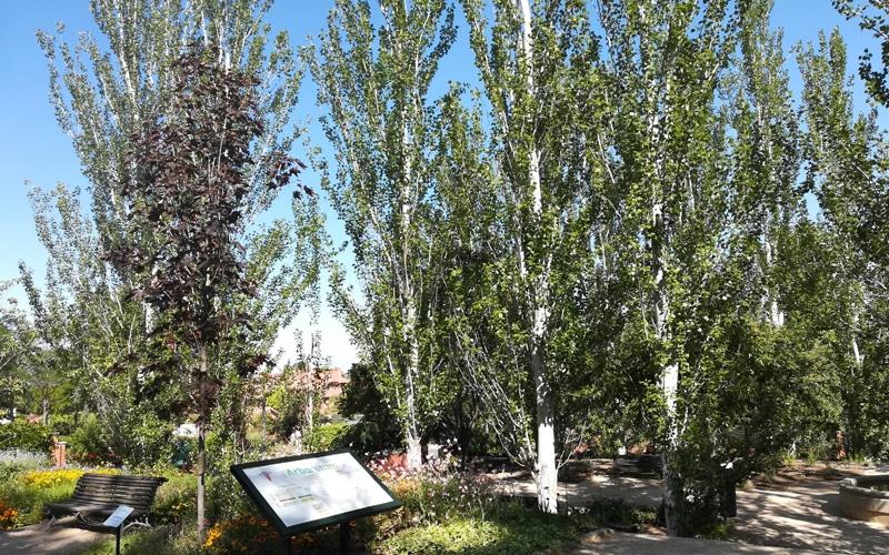 carteles arboreto rivas vaciamadrid botanico