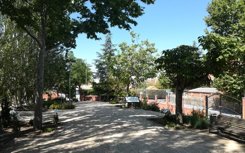 La calle Jazmín, junto al arborétum, se suma a los tramos peatonalizados para favorecer los paseos en Rivas