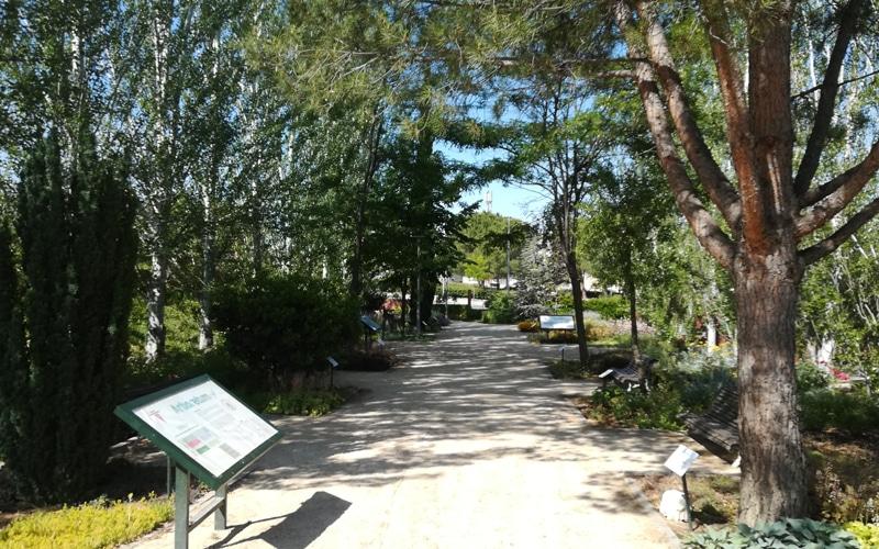 arboreto rivas vaciamadrid arboretum