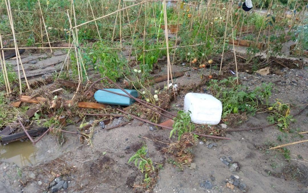 Así han afectado a los huertos urbanos de Rivas las tormentas de este lunes