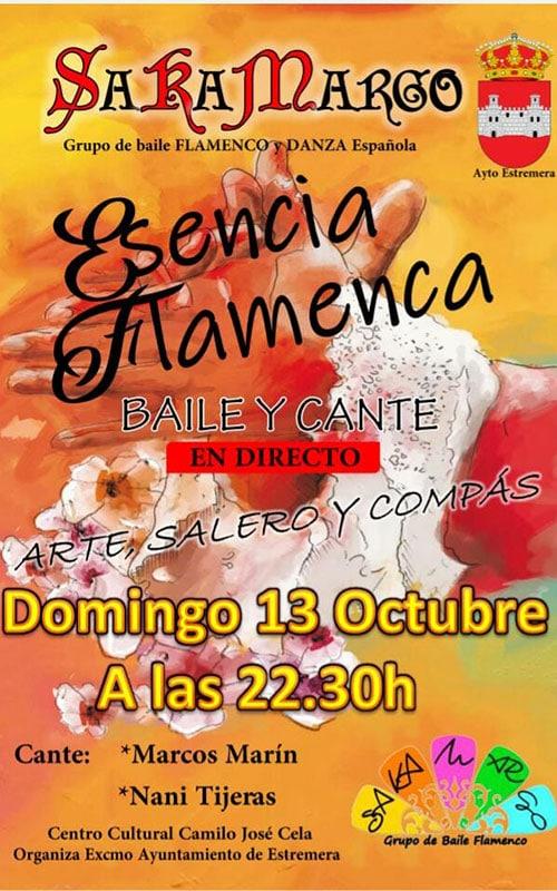 Sara Amargo, grupo de baile flamenco.