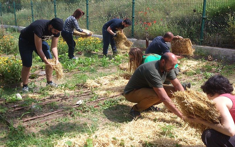 Vuelven el huerto ecológico comunitario