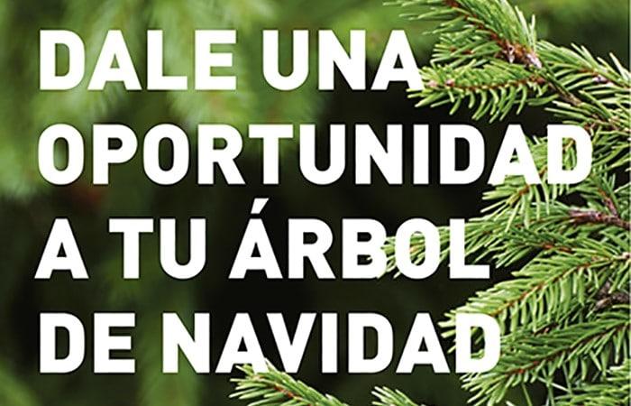No tires tu árbol de Navidad: Rivamadrid lo recoge para darle una segunda vida