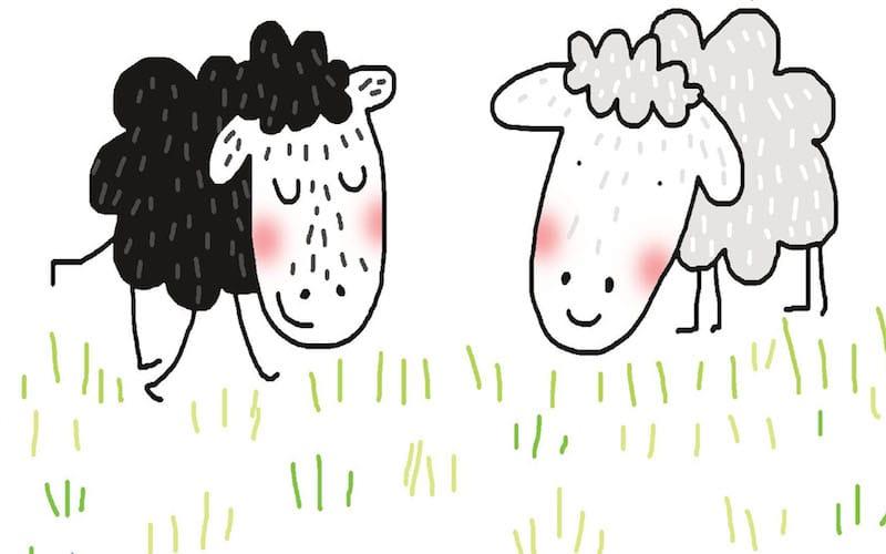Cuentos para niños y niñas: 'Ovejas negras'