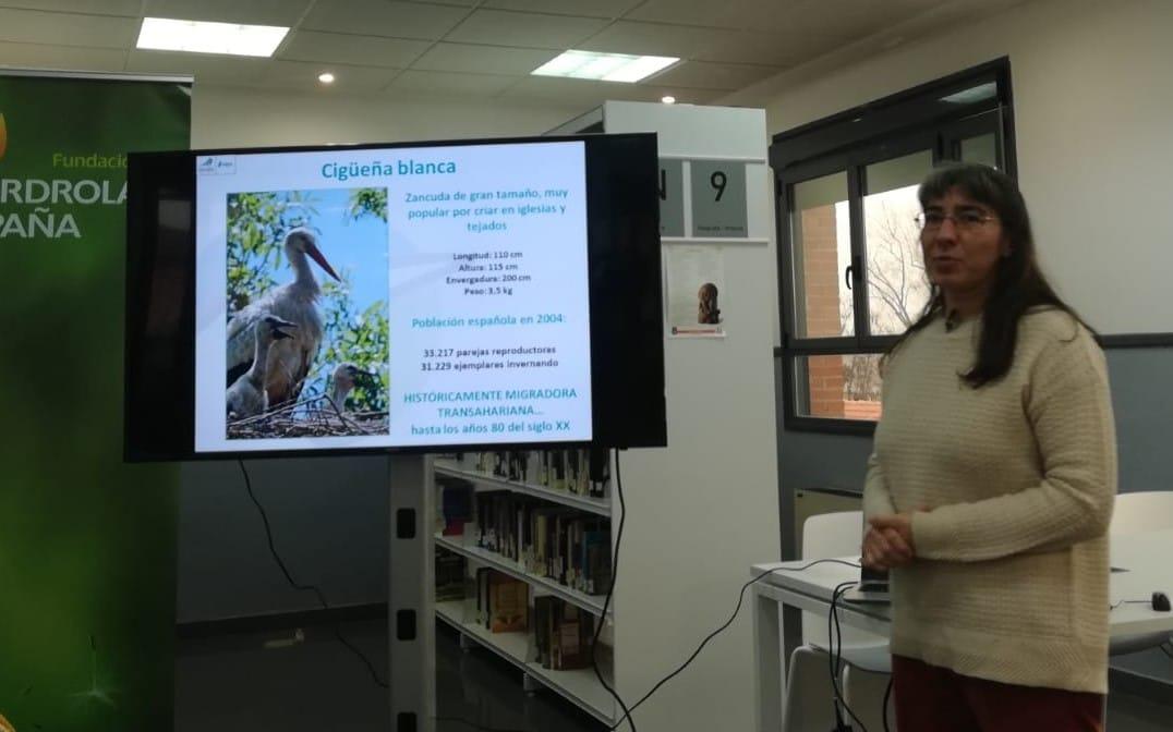 Presentación del estudio 'Migración y ecología espacial de la cigüeña blanca en España'
