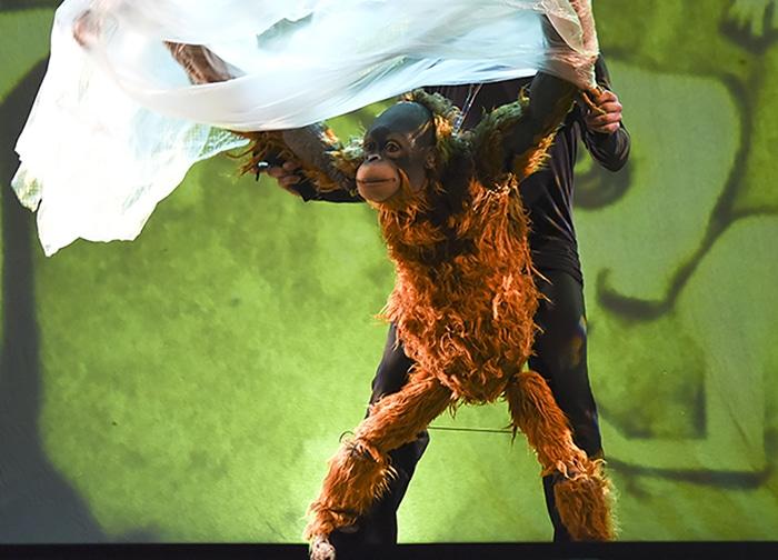 Teatro familiar: 'Jojo', de la selva de Borneo al Auditorio Pilar Bardem
