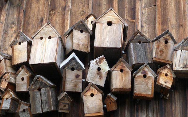 Taller de cajas-nido en El Campillo