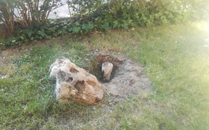 Arrancan el árbol plantado en homenaje a Víctor, la víctima del 'kamikaze' de la M-5', y su hermano 'Rober'