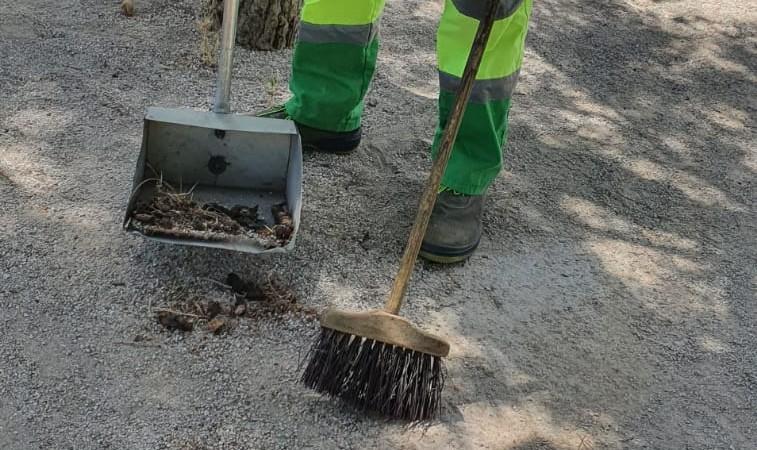 Rivamadrid prevé recoger más de 6,5 toneladas de excrementos caninos de las calles en 2020