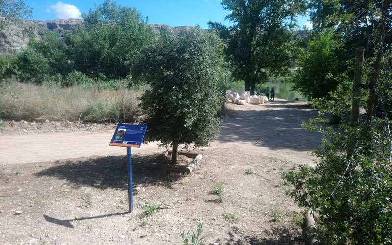 El Campillo, Medio Ambiente, Lagunda, Centro de Educación Ambienta, Rivas Vaciamadrid,