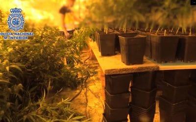 Cae una red de importación de heroína y de exportación de marihuana que tenía una 'base' en Rivas