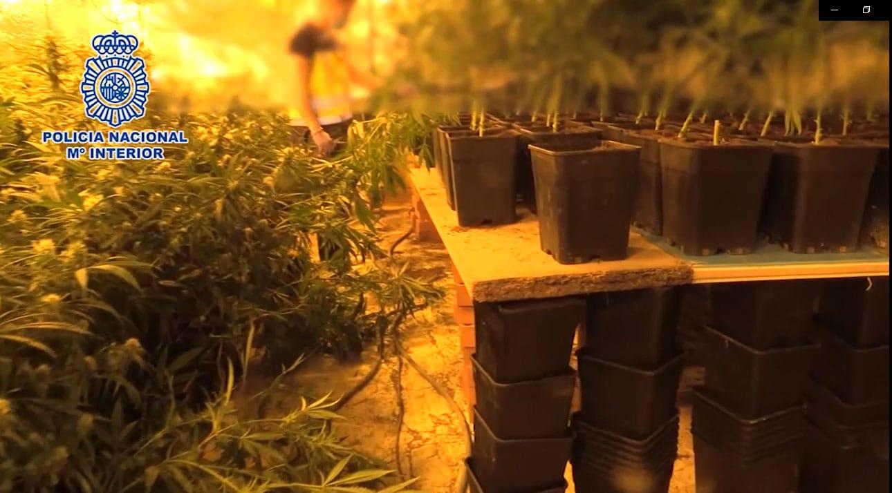 Operación de la Policía Nacional para desarticular un entramado criminal de importación exportación de droga