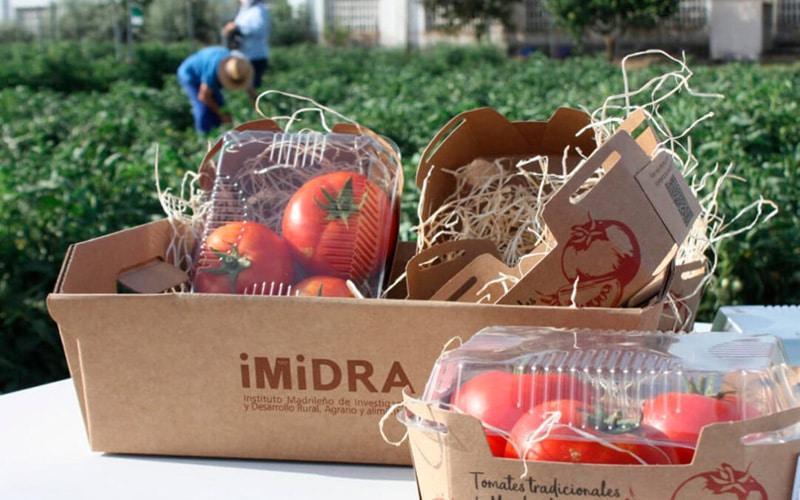 Tomates producidos en el marco de la investigación del IMIDRA, que se pondrán a la venta en los supermercados Alcampo