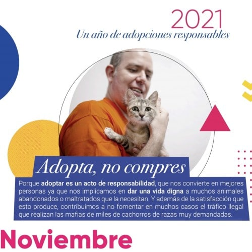 Imagen del calendario solidario de Rivanimal
