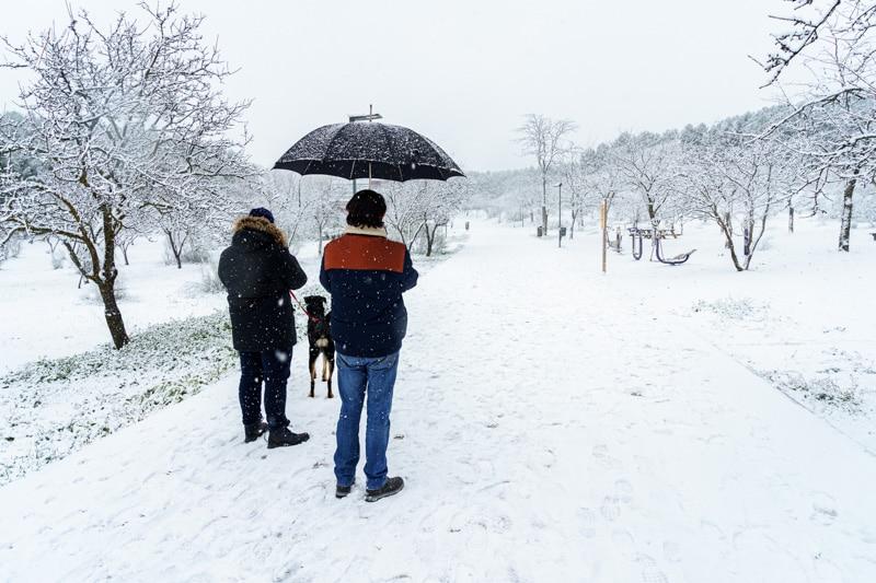 La primera jornada de nevadas en Rivas Vaciamadrid, en imágenes
