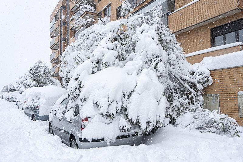 Objetivo: despejar de nieve las calles de Rivas