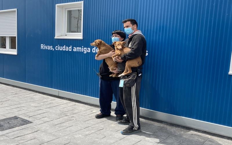 Cuidadores del Centro de Protección Animal de Rivas