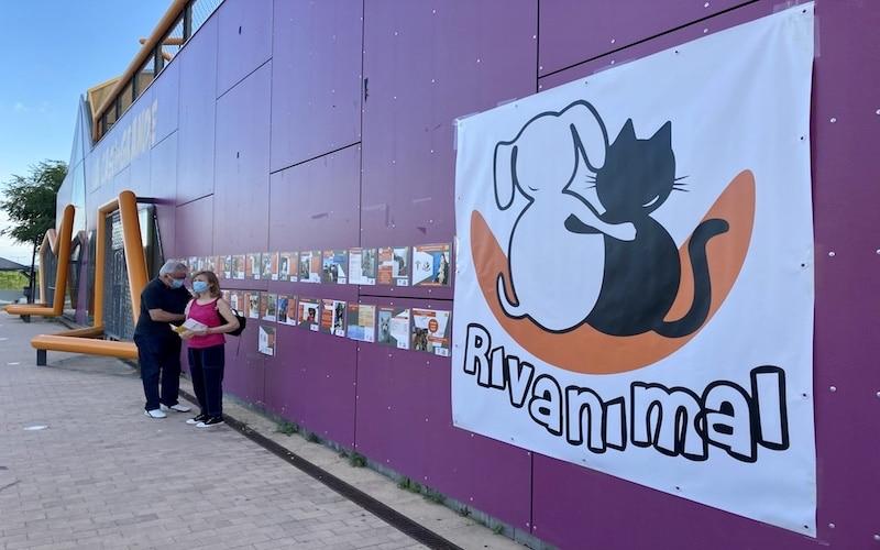 Celebración del décimo aniversario de Rivanimal en la Casa Más Grande de Rivas Vaciamadrid