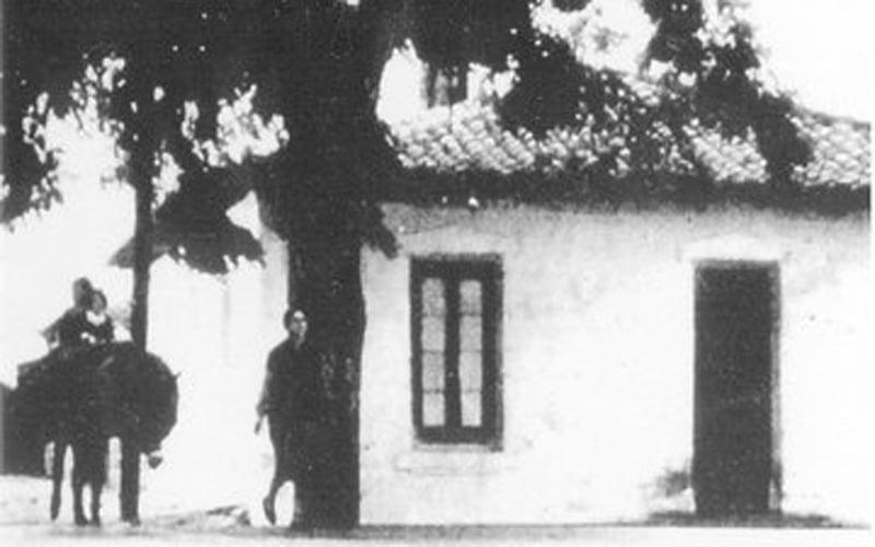 Casa del Árbol de la finca El Porcal